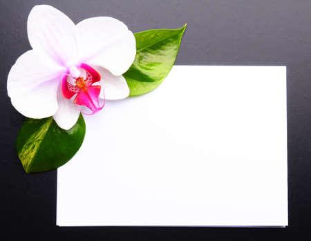 zen like: zen or spa stones with blank and empty copyspace paper