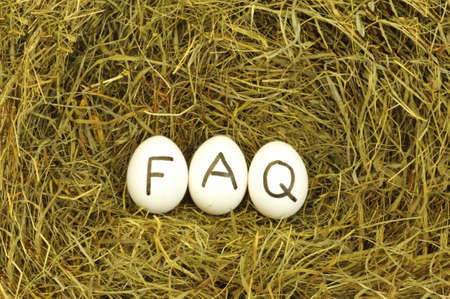 food questions: faq or frequently asked questions internet concept with eggs