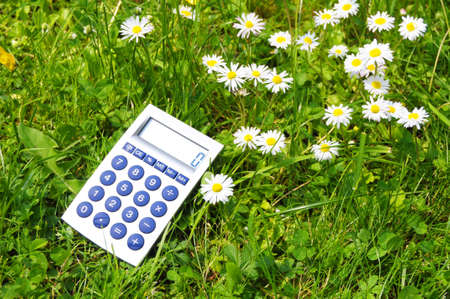 bereavement: ecological accounting concept with calculator in green grass