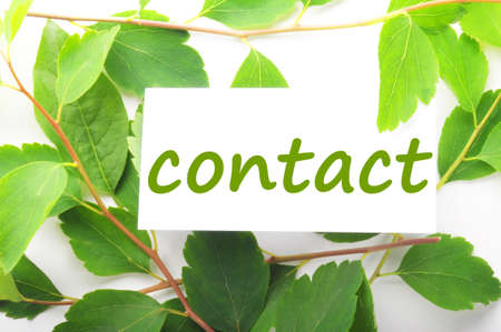 contact us concept with word on nature still life photo
