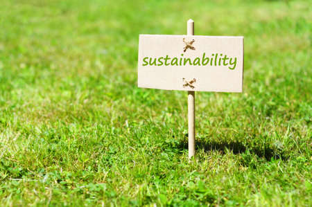 sustainability: sustainability concept with word on nature still life