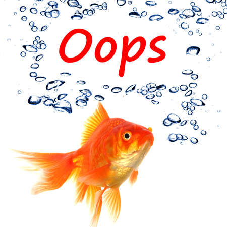 oops word and goldfish showing accident failure or danger danger warning concept Stock Photo - 7974053