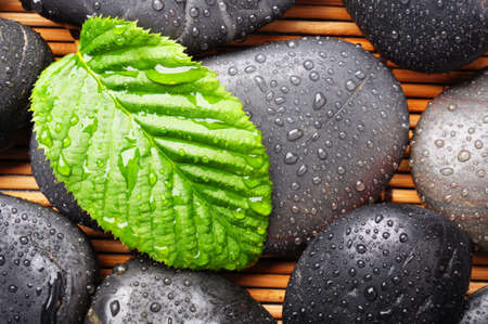 rainy day: zen stone with green leaf or water drops showing spa or wellness concept Stock Photo