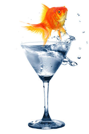 goldfish in glass of water showing challenge or creativity concept Stock Photo - 8046301