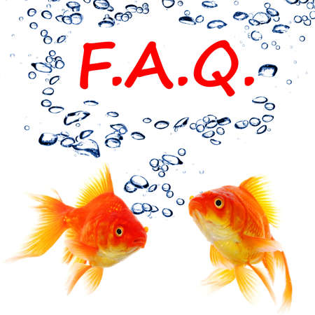 faq or frequently asked questions concept with goldfish Stok Fotoğraf