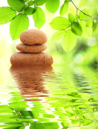 zen or spa concept with stone leaf and water reflection Stock Photo - 8067316