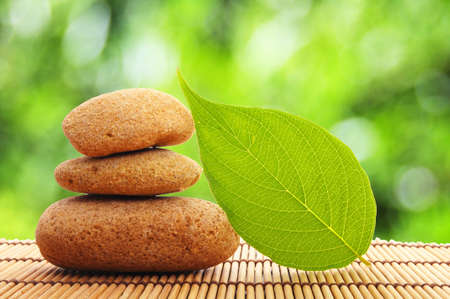 alternative therapies: zen stone and green leaf showing spa or wellness concept