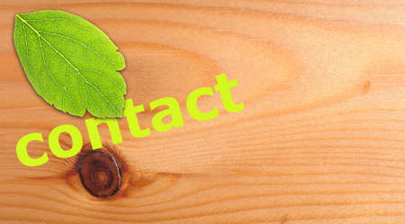 contact us concept with word on nature still life Stock Photo - 8183315