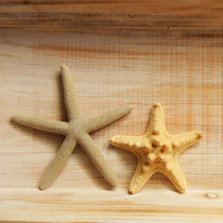 vacation concept with star fish or shellfish and copyspace on wood texture Stock Photo - 8221731