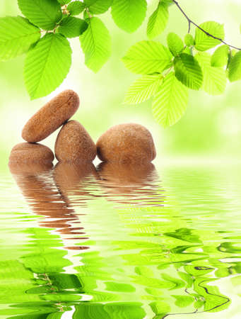 zen or spa concept with stone leaf and water reflection