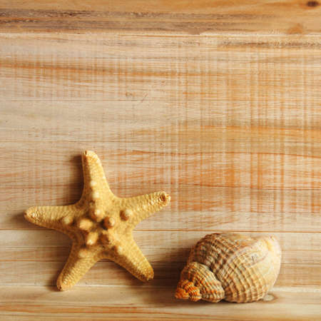 star fish and wood copyspace showing holiday or vacation concept photo