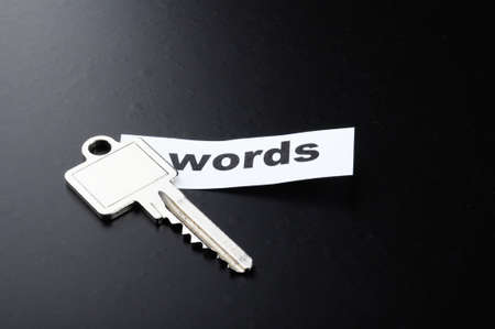 keyword key words seo or metadata concept showing internet data search Stock Photo - 8423984
