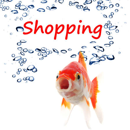 shopping or shop concept with word and goldfish photo