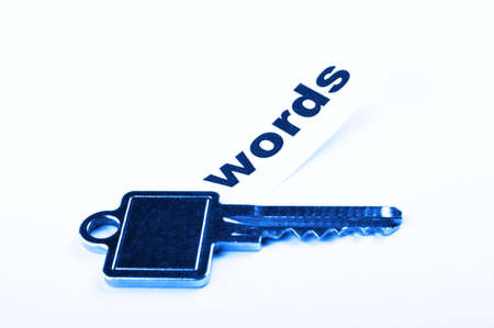 keyword key words seo or metadata concept showing internet data search Stock Photo - 8705463