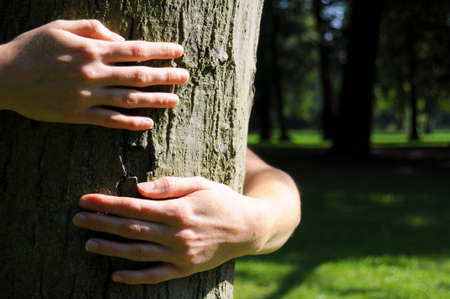 embracing a tree with hands shwing nature ecoecology or environmental concept photo