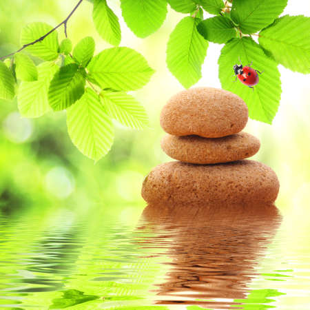 zen stones and green summer leaves with water reflection photo