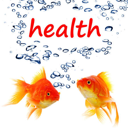 word health and goldfish showing spa or healthy lifestyle concept photo