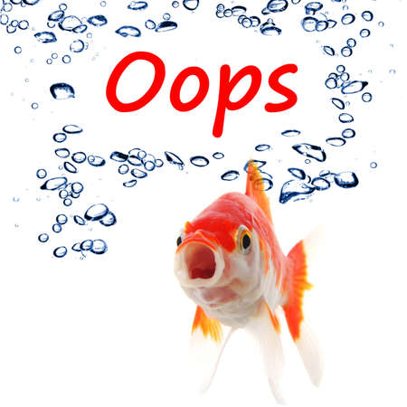 oops word and goldfish showing accident failure or danger danger warning concept Stok Fotoğraf - 9011698