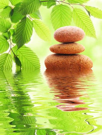 禅石と水の反射と緑の夏の葉