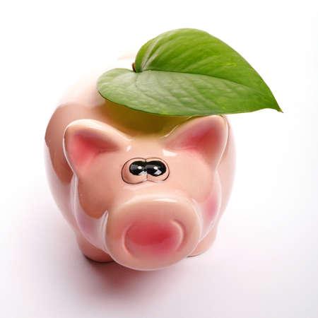 save the nature concept with piggybank an green leaf Stok Fotoğraf