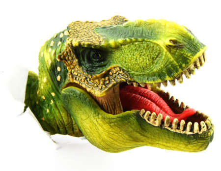 TRex Dinosaur Head isolated on white with ripped paper wall Stok Fotoğraf