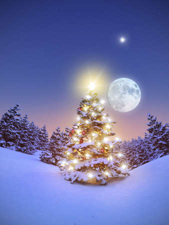 isoliert: Geschm�ckter Christbaum im verschneiten Wald 3D Stock Photo