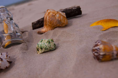 Beach compositions. Botlle brought by the water Stock Photo - 5356535