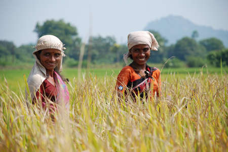 sweltering: Happy female farmers of rural India