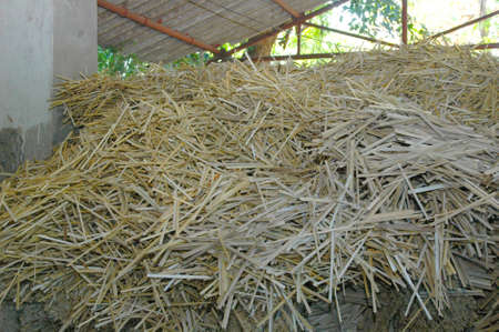 bamboo was sliced into thin pieces and rolled onto irresistibly divine incense pastes. Different regions are known for their different blends of dried flowers, herbs, sandalwood and oils designed to be offered to God, while invoking great devotion in the one who offers them. Imagens