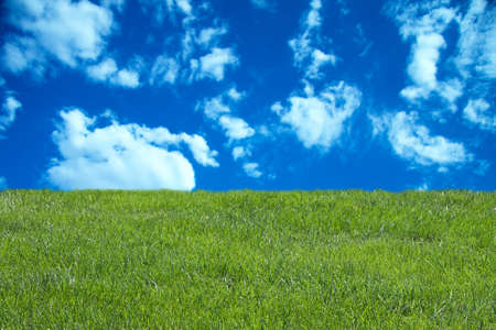 green grass with blue sky and clouds