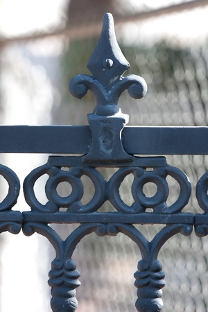 Rod iron fence in black on residential estate