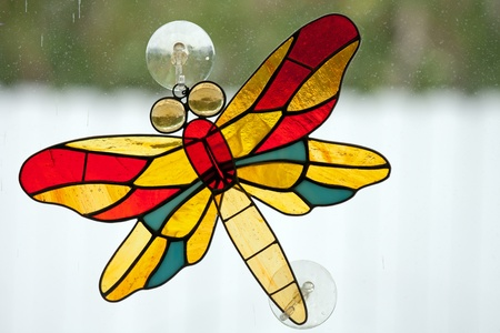 leaded glass dragonfly sticking to window with back light photo