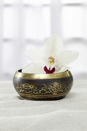 singing bowl: Canto ciotola di orchidea nella sabbia Archivio Fotografico