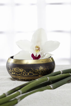 singing bowl massage: Bowl with Orchid and bamboo in the sand