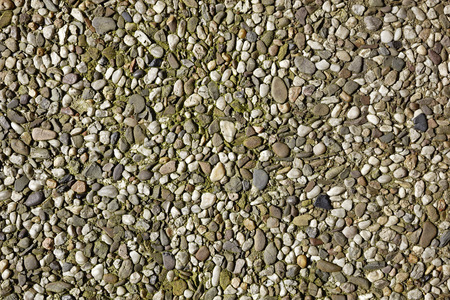 dwell house: Concrete with coloured pebbles