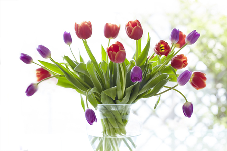 Springlike Tulip bouquet in different colors.