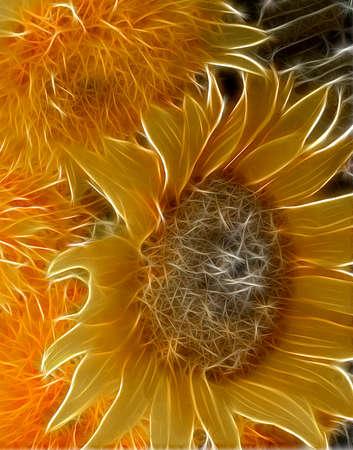 Fractal rendering of Sunflowers in a modern garden illustration.