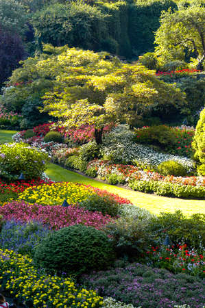Beautiful Gardens in Victoria, Canada with beautiful manicured gardens and flowers of every color in a natural environmental setting