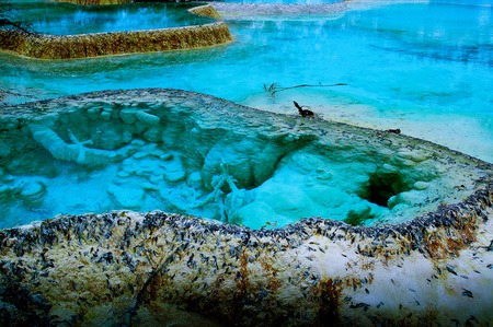 calcification: The beauty of the calcification pool