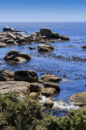 Kelp and boulders and a beautiful blue ocean Stock Photo - 12842234