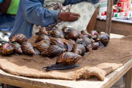 Massive snails, sold to be eaten at Accra market