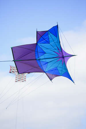 Purple and blue Japanese Sode Dako kite at the 2013 Bristol International Kite Festival photo