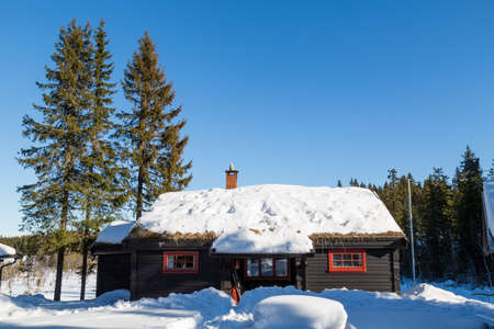 Typical black Norwegian cabin with fir trees surrounded by deep snow in the forest North of Oslo Editorial