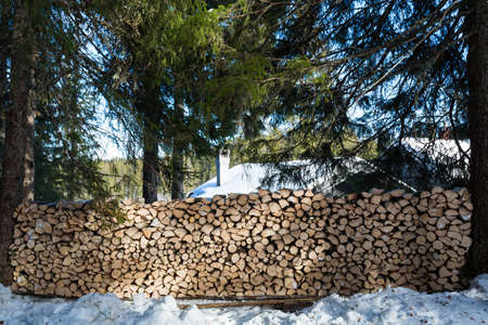 Large freshly chopped wood pile in dappled sunshine in the forest North of Oslo Standard-Bild