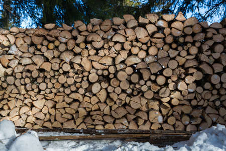 Close up of freshly chopped wood pile in the snow in the forest North of Oslo