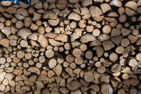 Close up of freshly chopped wood pile in the forest North of Oslo Standard-Bild