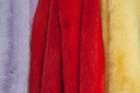 sample of fur of arctic fox