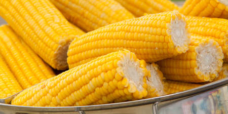 several pieces of boiled corn lie in a saucepan cooked for treat at a fair or in a cafe