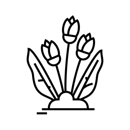 Growing flowers line icon, concept illustration, outline symbol, vector sign, linear symbol.