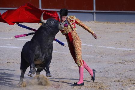 corrida de toros: Torero en una plaza de toros